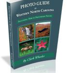 Photo Guide by Clark Wheeler, find on Amazon